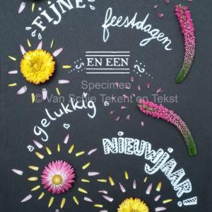 vuurwerk kerstkaart kaart bloemen