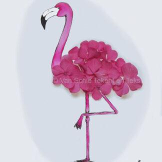 Bestelnr. 0005: Ansichtkaart flamingo