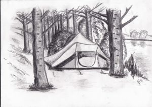camping tent kameren camp tree bos forest bomen trees