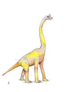 Dinosaur dino langnek Dinosaurus brachiosaurus brachiosaur postcard ansichtkaart dinokaarten dinokaart dinosauruskaart dinosauruskaarten