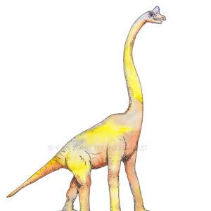 Dinosaurus dinosaur brachiosaurus brachiosaur ansichtkaart postcard