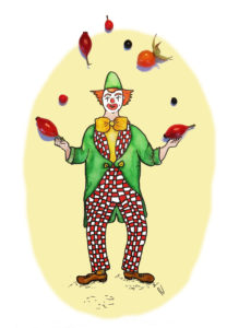 Circus acrobaat joggler joggling  rose hip rozenbottel jongleren nostalgisch nostalgic