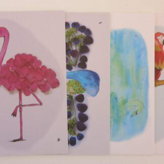 Set van 4 vogelkaarten
