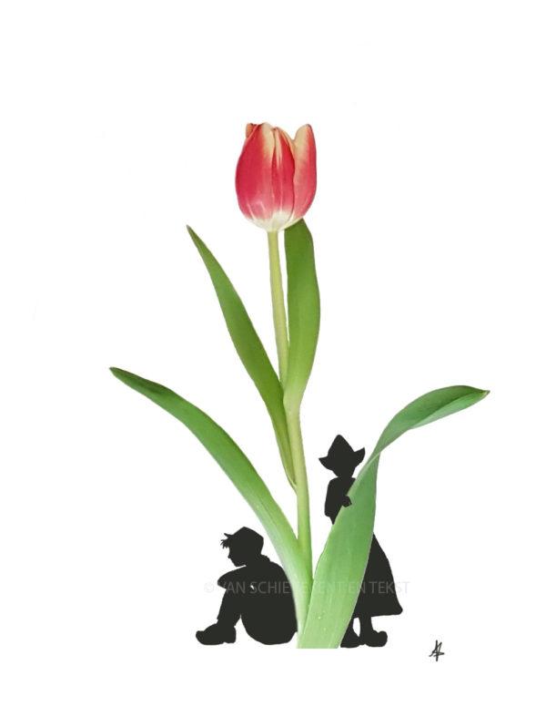 Tulp tulip ansichtkaart postcard typical dutch farmer couple hollands