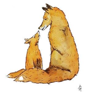 fox foxes vossen bos forest