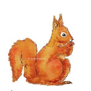 eekhoorn squirrel kaart postcard