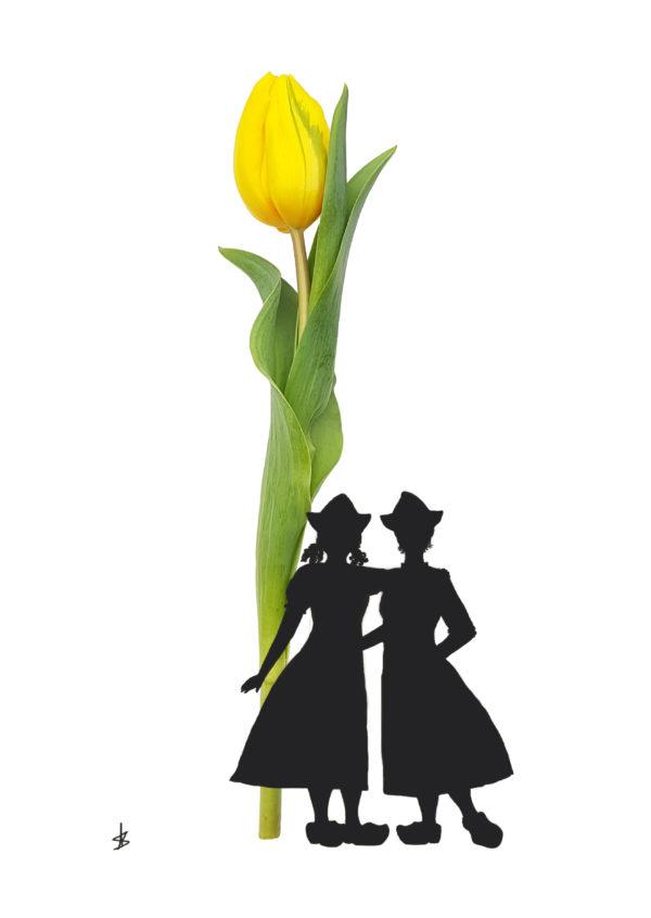 tulp tulip gay lesbian postcard ansichtkaart typical dutch hollands