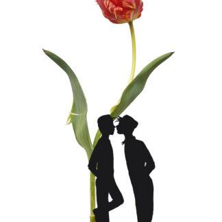 tulip tulp gay postcard homo kus homokus gaykiss ansichtkaart typical dutch hollands