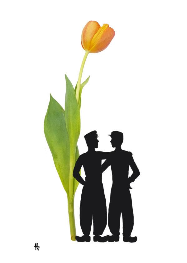 tulip gay postcard homo ansichtkaart tulp typical dutch hollands