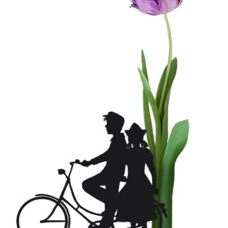 fiets tulip tulp dutch farmercouple bicycle postcard ansichtkaart typical dutch hollands