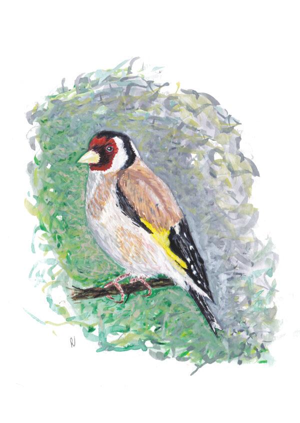 bird vogel distelvink puttertje ansichtkaart kaart postcard goldfinch