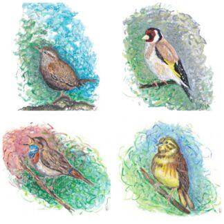 birds vogels winterkoninkje ansichtkaart kaart postcard goldfinch puttertje distelvink blauwborst geelgors