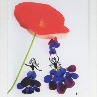 flower bloemen meisjes girls poppy klaproos viola